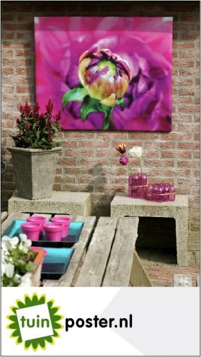 tuinposters
